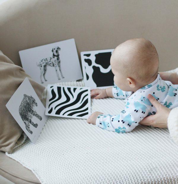 Развивающие карточки Монтессори для малышей